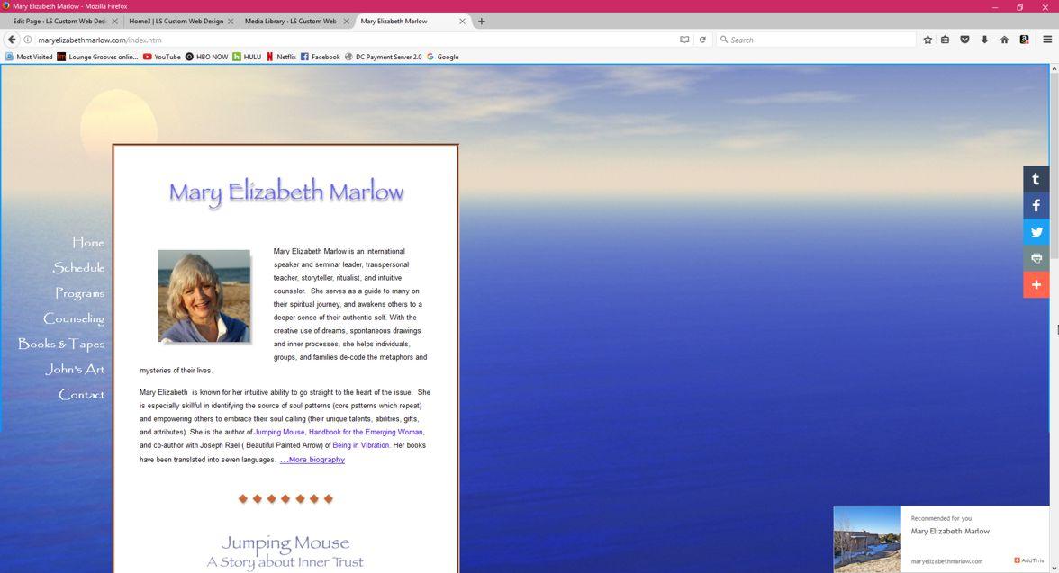 MEM_website